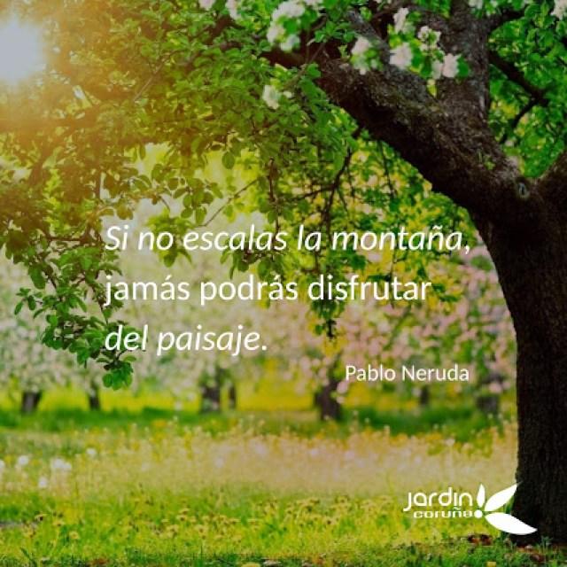 Frases de motivacion en imagenes de jardines