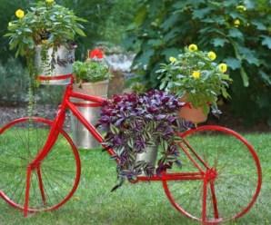 Imagenes Con Ideas De Reciclaje Con Bicicletas Para El Jardín