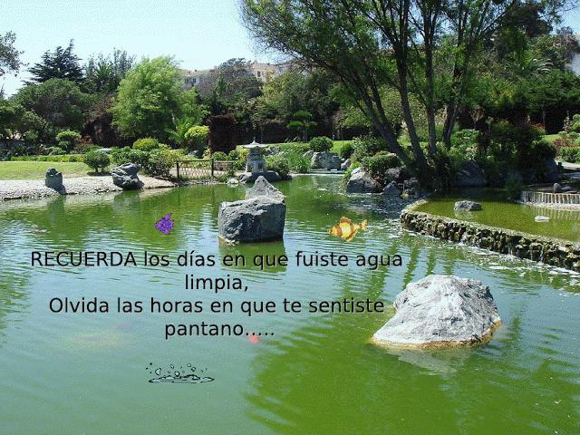Lindas imagenes de jardines con mensajes para reflexionar