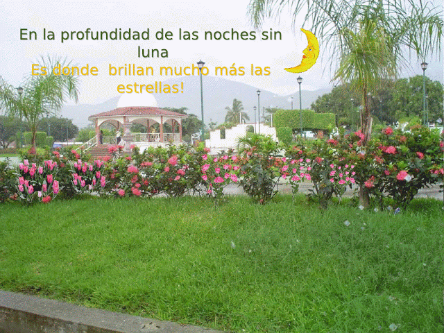 Mensajes de motivacion en imagenes de jardines