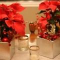Imagenes De Decoraciones Navideñas Con Flores De Pascua