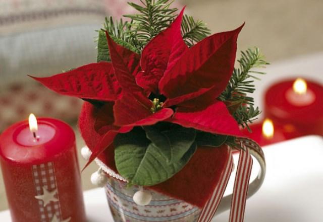 decoraciones-con-flores-de-navidad