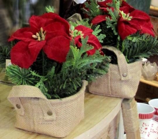 navidad-cestito-flor-pascua-roja