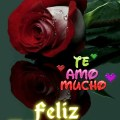 Imagenes De Flores Con Frases De Feliz Año Para Mi Amor