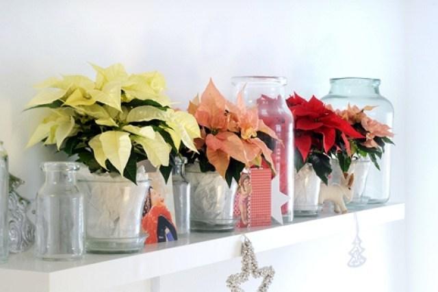 Imagenes de decoracion con flores navideñas
