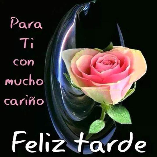 Feliz tarde para ti con mucho cariño imagenes rosas