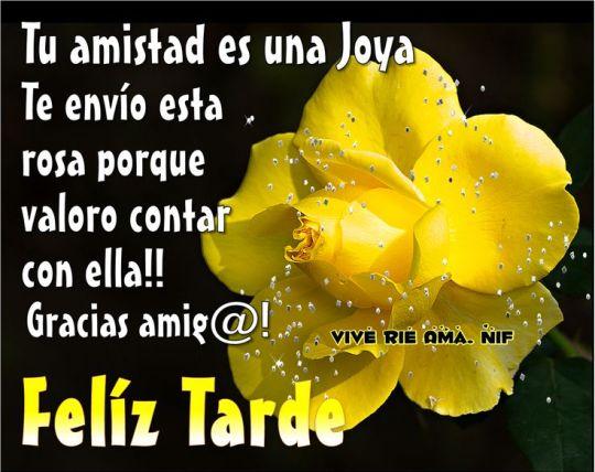 Rosa amarilla feliz tarde mensaje para compartir