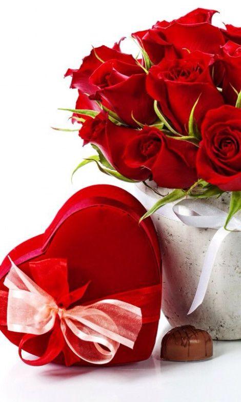 Descargar rosas rojas para enviar el día de los enamorados
