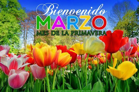Fotos de jardines de flores Bienvenido marzo para Compartir