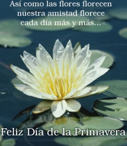 Imagenes Con Frases Feliz Día De La Primavera