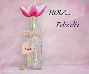 Imagenes de Flores Feliz Día Para Regalar En Una Fecha Especial