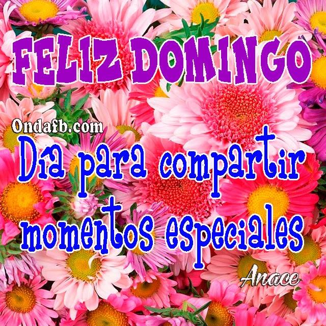 Imagenes de flores para enviar por mensaje Feliz Domingo