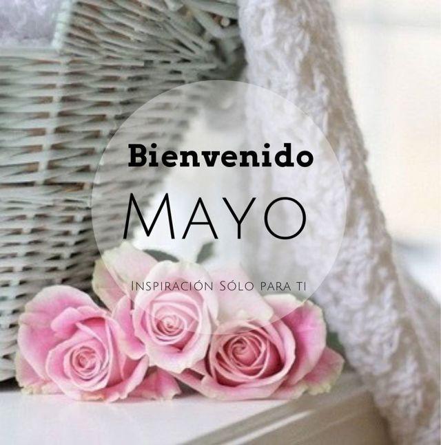 Postales con rosas rosadas Bienvenido Mayo