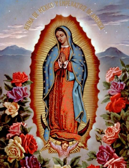 Imagen de la Virgen de Guadalupe con rosas para enviar