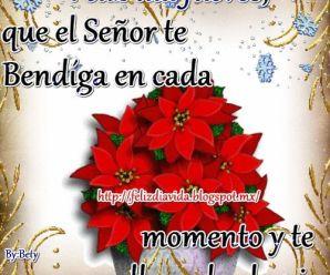 Imagenes Gif Navideñas Con Flores Feliz Jueves