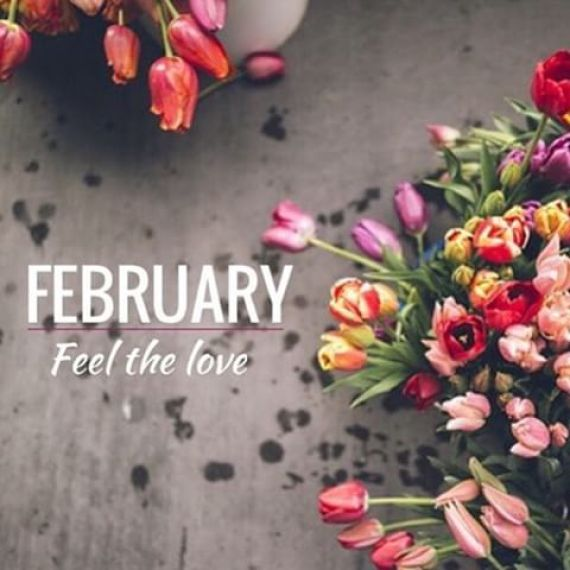Imagenes de Flores February Feel the love