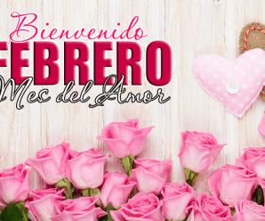 Imagen De Flores Bienvenido Febrero Para Compartir