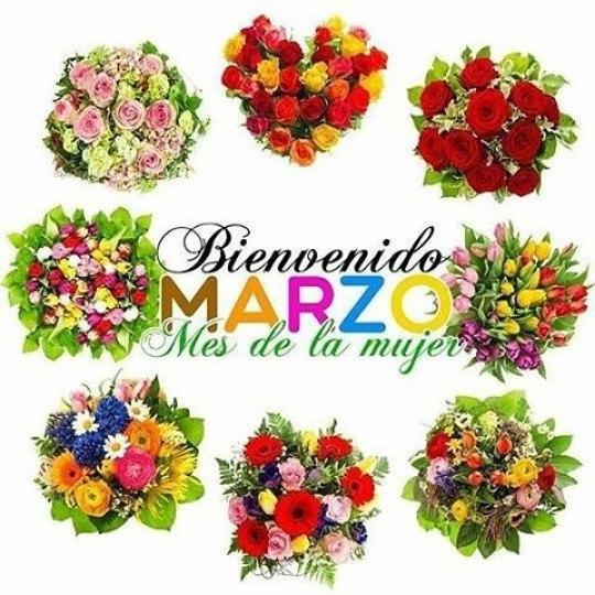 Bienvenido marzo mes de la mujer y las flores