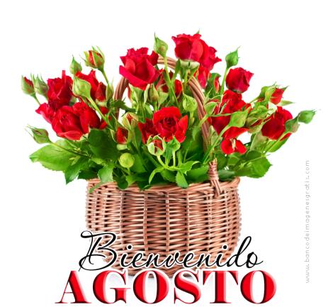 bienvenido mes de agosto ilustración con flores y mensaje para compartir 002