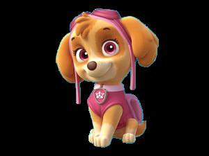 skye-patrulla-de-cachorros-png-imagenes-de-paw-patrol-skye-personajes
