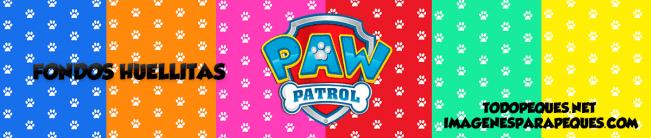 patrulla canina fondos