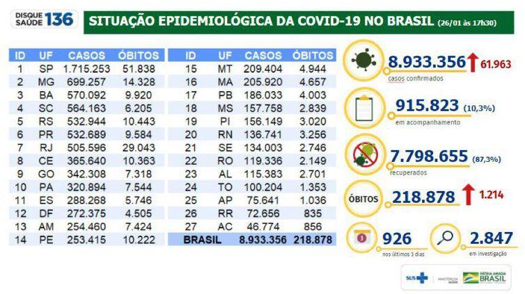 Situação epidemiológica no Brasil.