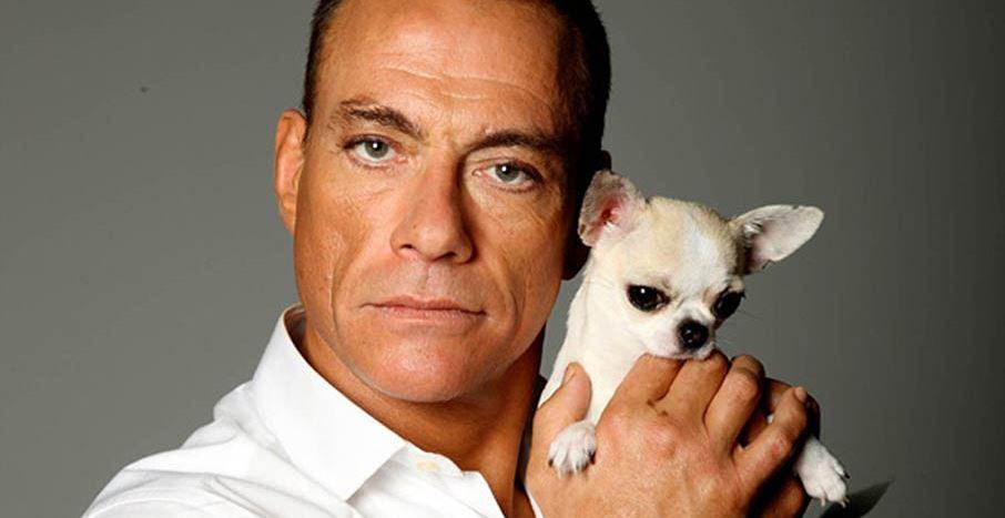 Van Damme - Monaco Forever