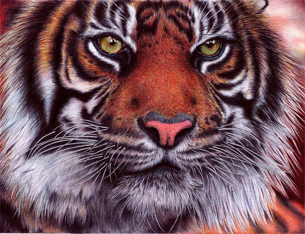 As incríveis pinturas feitas com caneta Bic de Samuel Silva 02