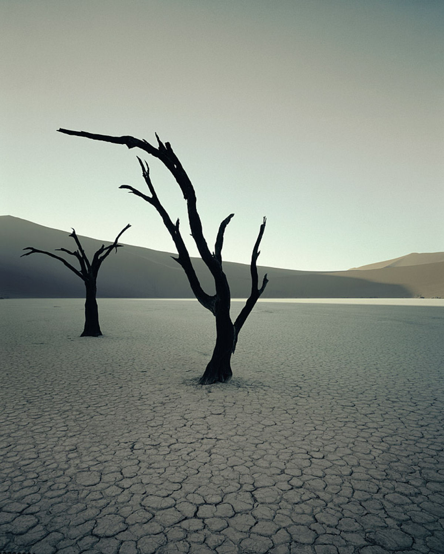 A beleza da tribo Himba, os últimos povos nômades da África 07