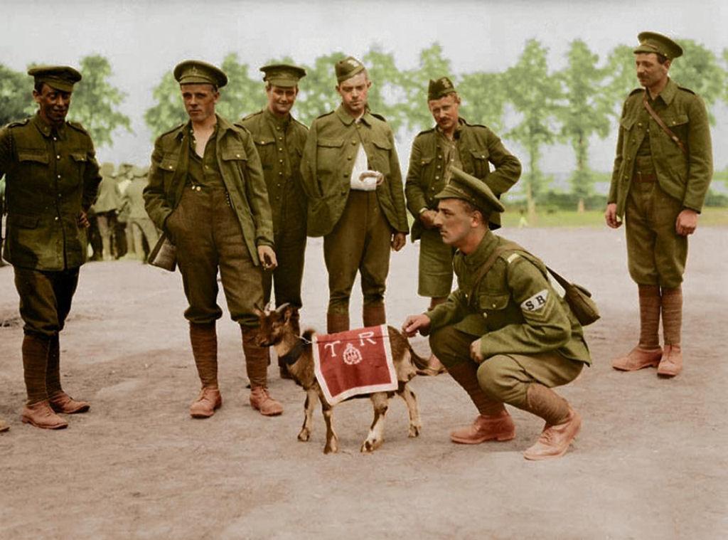 Fotos colorizadas trazem Primeira Guerra à vida 95