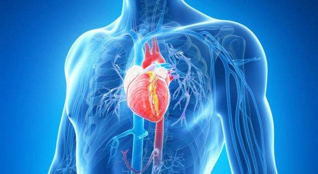 Resultado de imagem para Mais de 289 mil pessoas morreram de doenças cardiovasculares em 2019