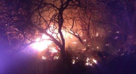 Incêndios foram controlados, mas voltaram a aparecer em Floresta