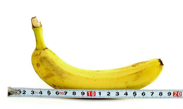 Segundo a pesquisa, o comprimento de um pênis flácido é de 9,16 centímetros, e o de um pênis ereto é de 13,12 cms / Foto: reprodução