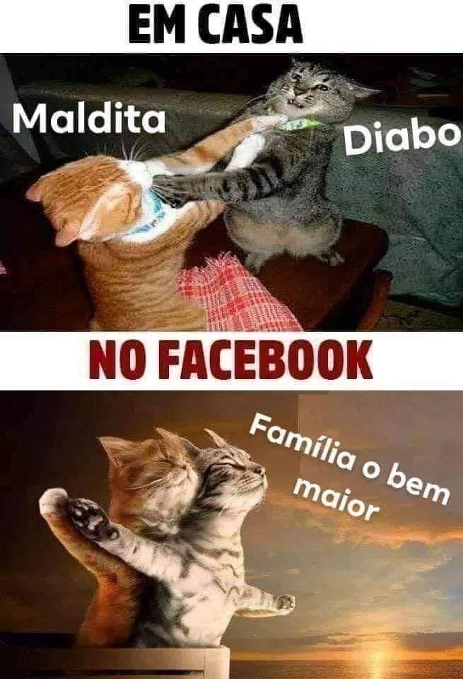 Memes Divertidos para Mijar de Rir e Compartilhar no WhatApp e facebook