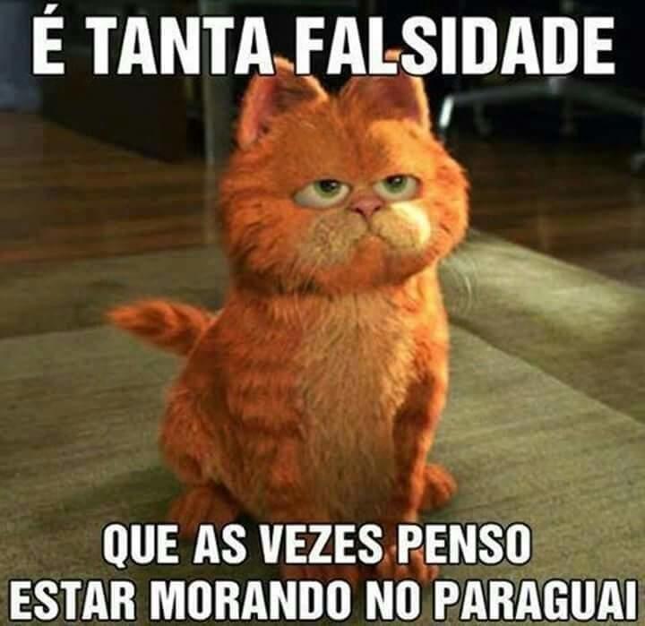 Memes Divertidos para Mijar de Rir e Compartilhar no WhatApp Garfield