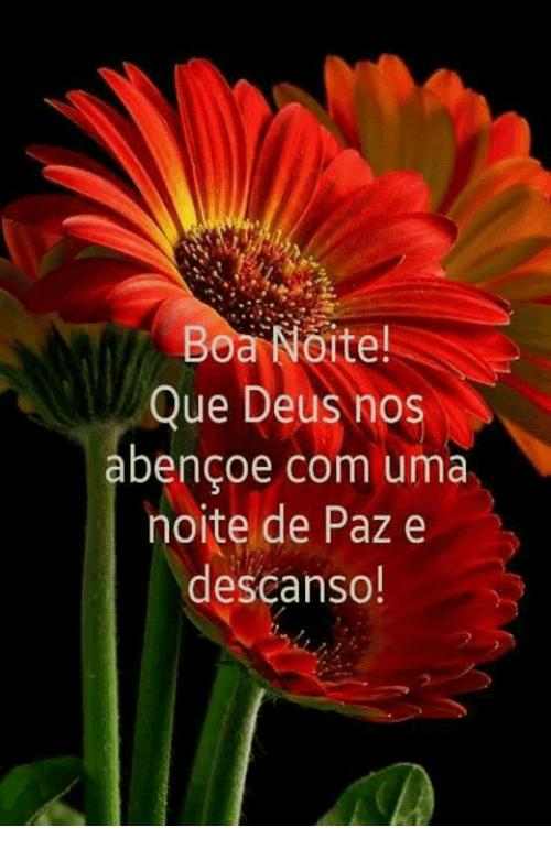 Boa Noite com Deus com Flores