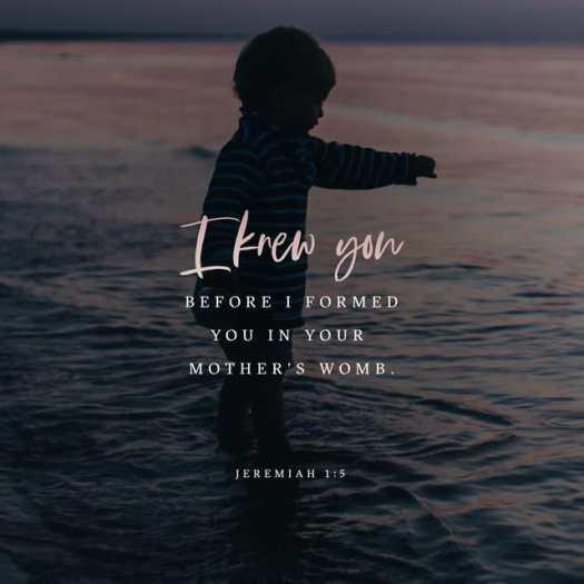 Jeremiah 1:5 NLT