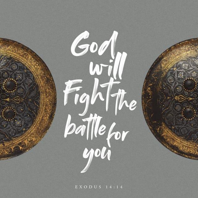 Exodus 14:14 - https://www.bibl...