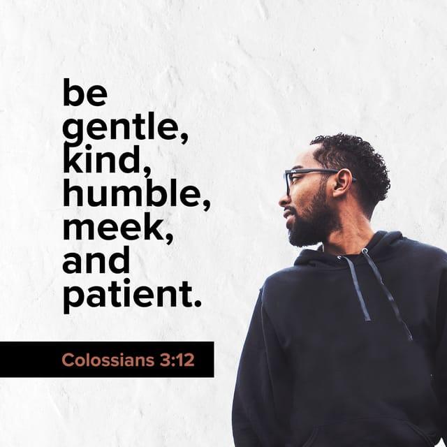 Colossians 3:12 - https://www.bibl...
