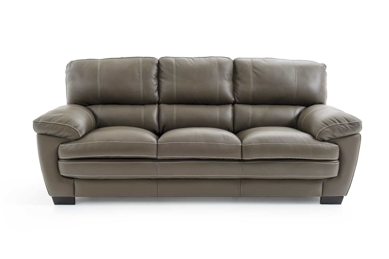 Leather Sofa Tampa Modular Sectional Sofa And Thayer