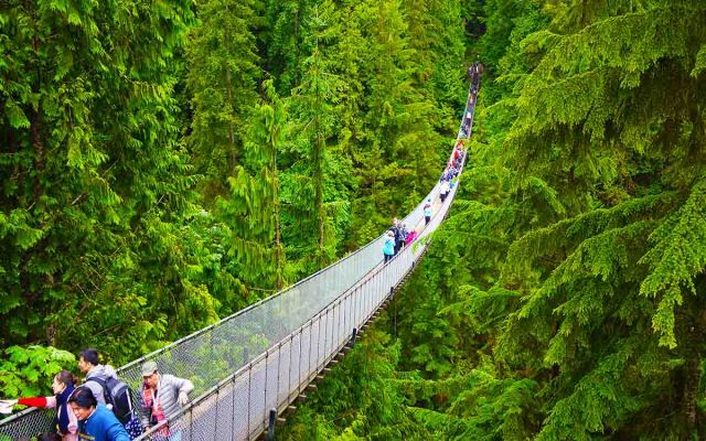 Capilano suspension bridge Park is 02 place in your list of top vancouver photography spots