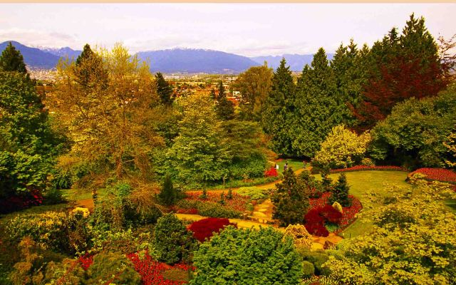 Queen Elizabeth Park is 08 place in your list of top vancouver photography spots