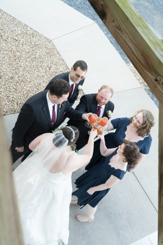The bridal party cheers after a ceremony at Hermitage Hill Farm in Waynesboro, Virginia.