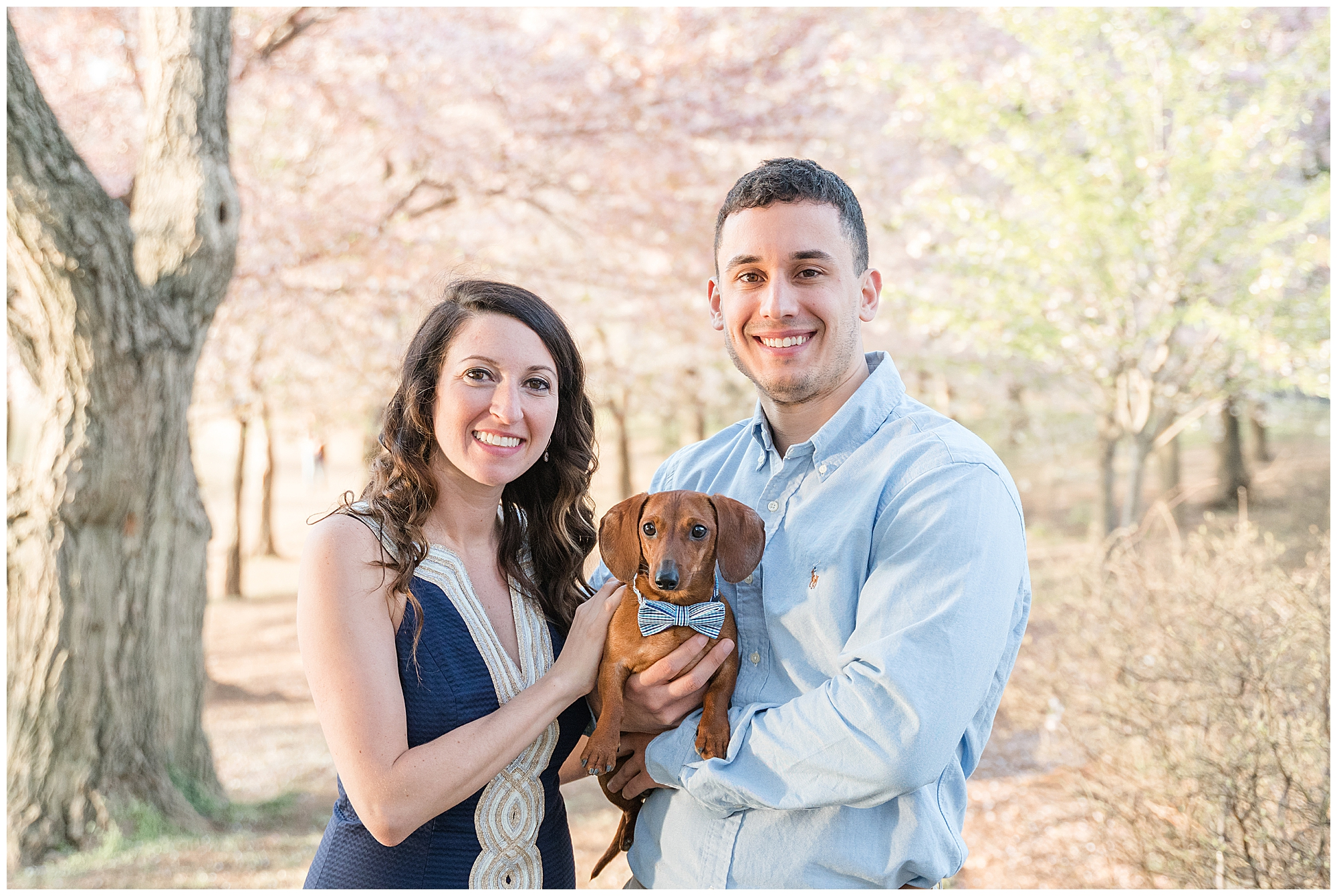 DC pet photography