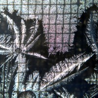 Frost Grid