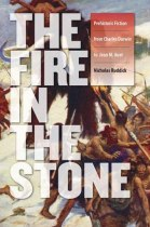 Fire in the Stone cover