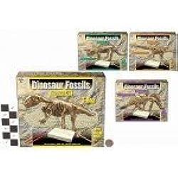 Los fósiles de dinosaurio excavación excavación Kit - Surtido de dinosaurios - suministrado