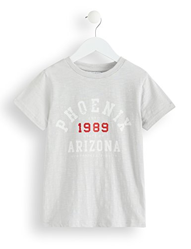 RED WAGON Boy's Arizona T-Shirt, Grey, 122 (Manufacturer size: 7 years) 7)