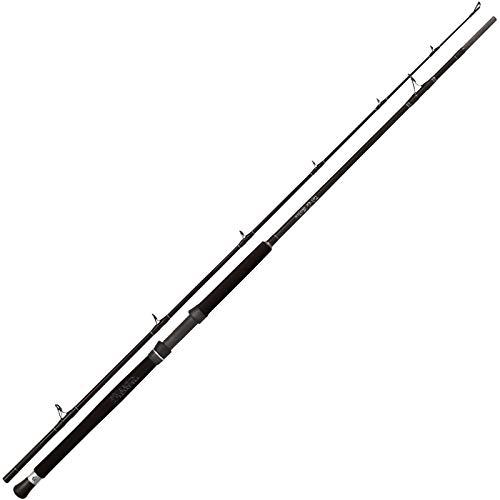 Black Cat Buster - Canna da Pesca, 3 m, 300-500 g