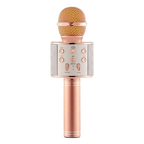 ZYG.GG Inalámbrico Bluetooth Karaoke Micrófono Portátil Familia KTV Función Anti-oído en Tiempo Real Apoyo Tarjeta TF Adecuado para iPhone,PC y Todos los teléfonos Inteligentes,Pink